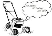 Just a Little Off the Top Lawn Care Springboro